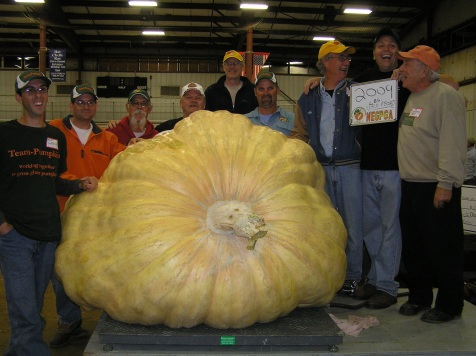 One Ton World Record 2009 Wallace